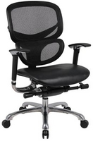 Contemporary, Multifunction Ergonomic Black Mesh Chair w/ Leather Seat, Chrome Frame & Adjustable Lumbar Support & Armrests