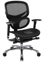 Contemporary, Multifunction Ergonomic Black Mesh Chair w/ Adjustable Lumbar Support & Armrests, Chrome Frame