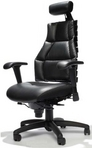 "Executive Ergonomic Black Leather Chair w/ Full Lumbar Support & Headrest; Featured in the TV Show ""Doctors"""