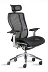 Ergonomic Black Mesh Chair